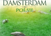 Spleen d'Amsterdam –  poèmes en prose